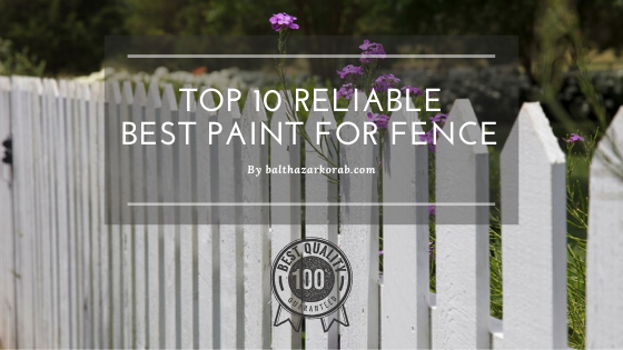 best paint for fence